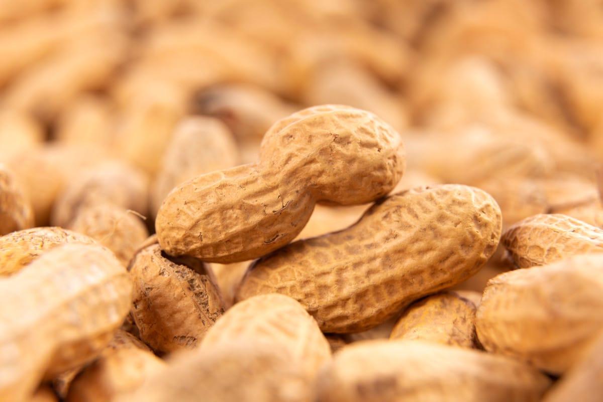 5 razones para incluir los cacahuetes en tu dieta