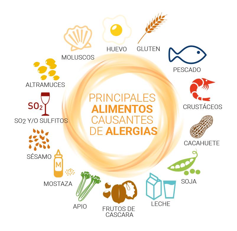 SGP 001 FD JJ GREFUSA alergenos - ¿Qué son los alérgenos alimentarios?