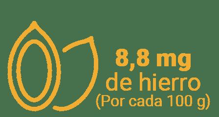 PCALABAZA - 5 frutos secos que son fuente de hierro